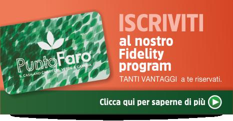 faro banner_3